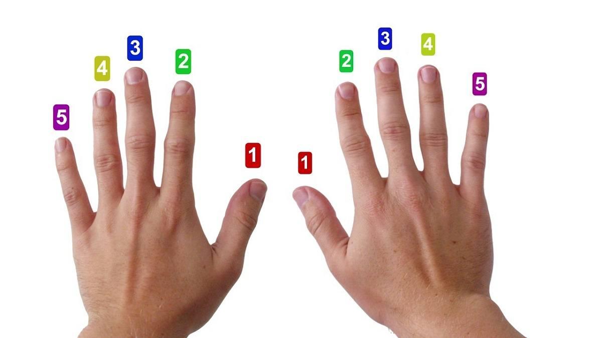 Fingersatz Nummerierung an den Händen